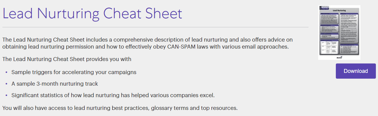 Lead Nurturing Sheet