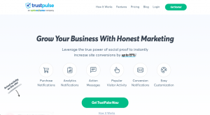 TrustPulse is a great lead generation tool for social proofs